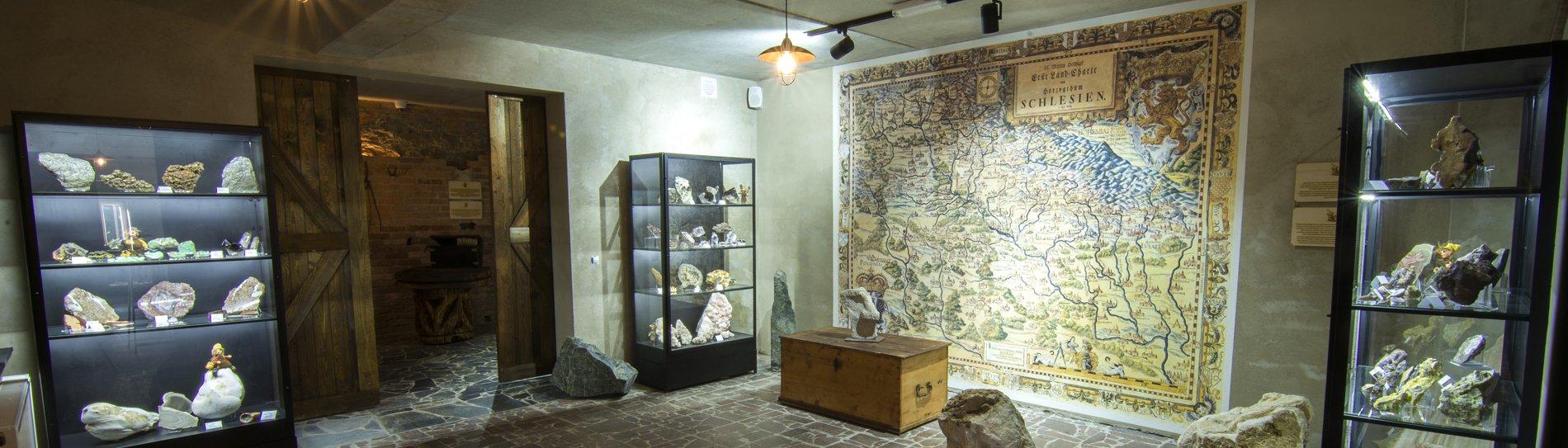 Muzeum Ziemi – Juna